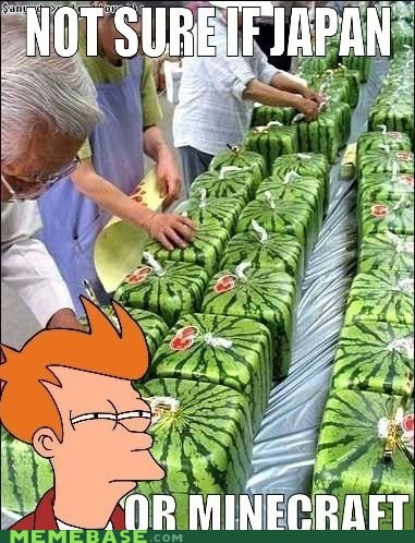 fry,Japan,minecraft,oh Japan,watermelons