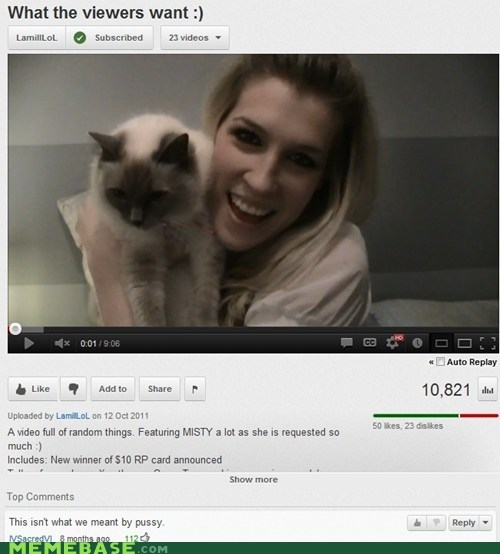 Cats,rude,that sounds naughty,youtube