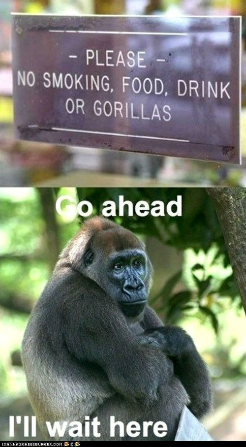 captions,discrimination,gorillas,multipanel,no,Sad,signs,waiting