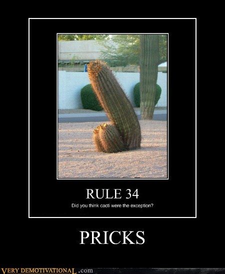 cactus hilarious no no tubes Rule 34 - 6438182912