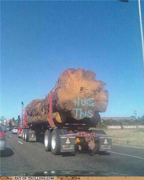 hug IRL stump tree tree trunk - 6438202368