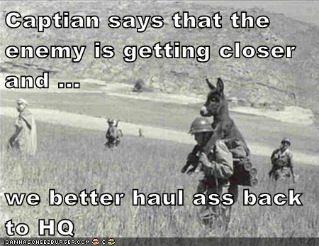 ass,donkey,grass,haul,hill,soldier