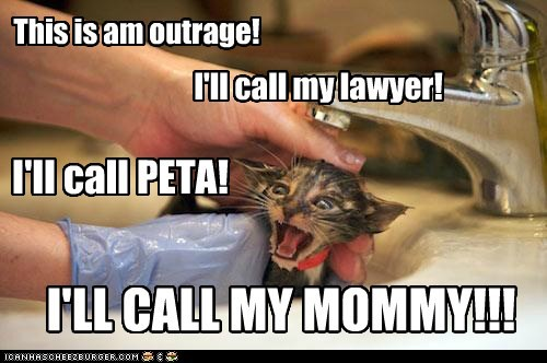 This is am outrage! I'll call PETA! I'll call my lawyer! I'LL CALL MY MOMMY!!! Cleverness Here