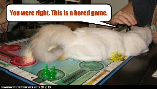 board game,bored,captions,Cats,comfort is relative,lay,sorry