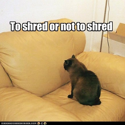 To shred or not to shred