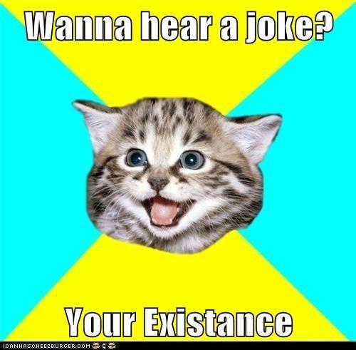 existance,Happy Kitten,joke,Memes