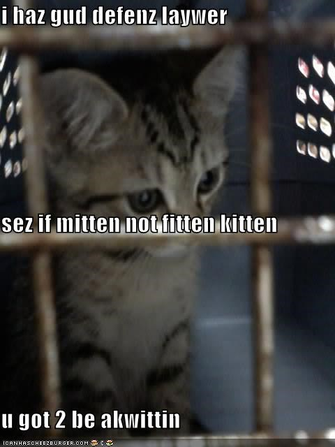 cage,jail,johnny cochran,kitten,law,lolcats,lolkittehs,oj simpson