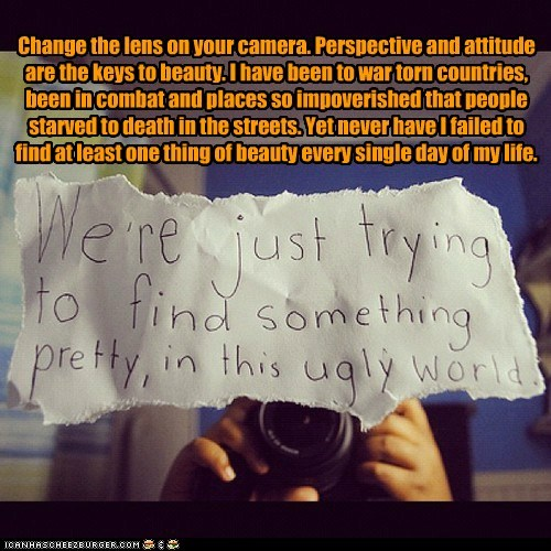 Change the lens on your camera. Perspective and attitude are the keys to beauty. I have been to war torn countries, been in combat and places so impoverished that people starved to death in the streets. Yet never have I failed to find at least one thing of beauty every single day of my life.