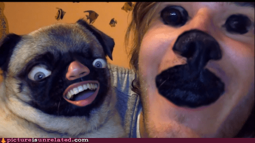 best of week,creepy,dogs,shopped pixels,wtf