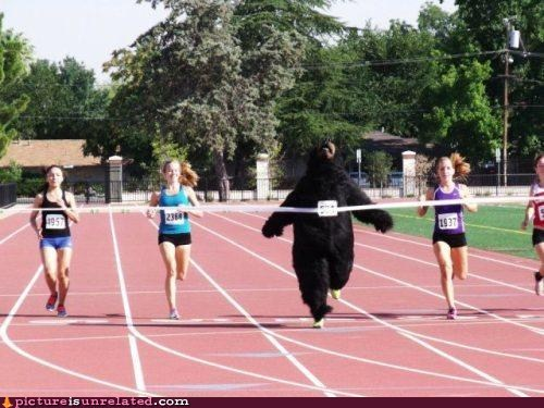 bear,costume,racing,style,suit,track,winning,wtf