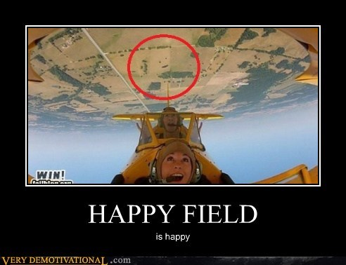 smiley face happy airplane field - 6440788992