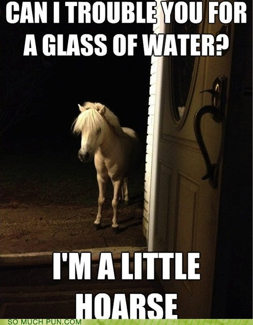 caption,double meaning,hoarse,homophone,horse,literalism,question,request,water