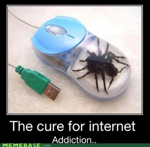 addiction internet Memes mouse spider web