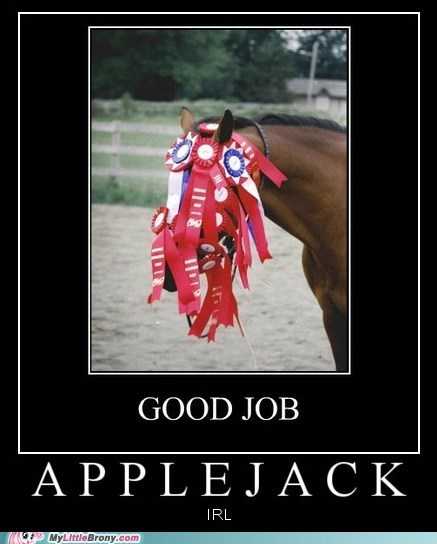 applejack horse IRL medals the internets