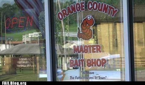 bait shop sign store window - 6441119488