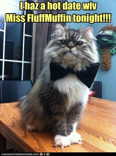 I haz a hot date wiv Miss FluffMuffin tonight!!! . .