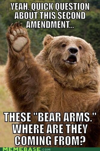 amendment america bear Memes source - 6441528576