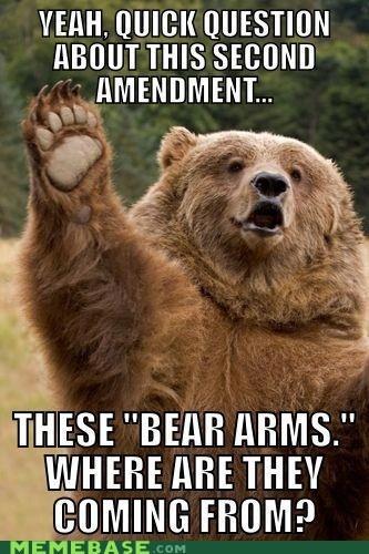 amendment america bear Memes source - 6441528576