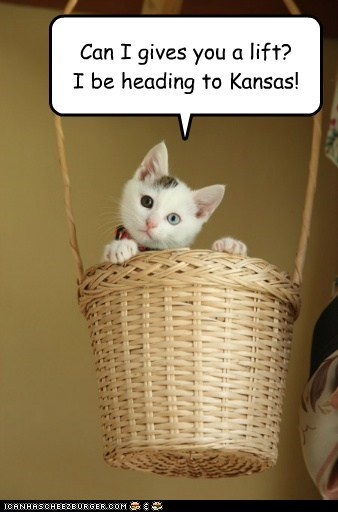 basket,captions,Cats,Hot Air Balloon,Kansas,oz,reference,wizard of oz