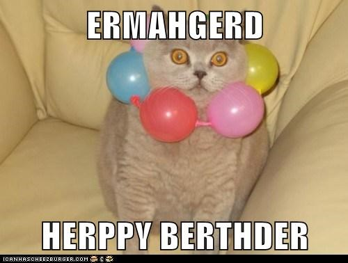 Balloons birthday cat Ermahgerd - 6442040320