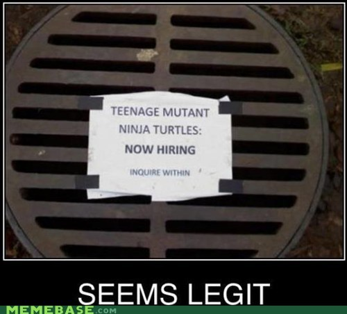 exposure hiring radiation seems legit TMNT turtles - 6442589696