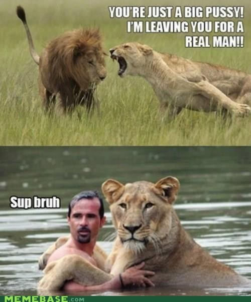 human lion love man Memes - 6442590720