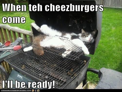 Cheezburger Image 6442903552