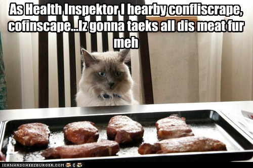 captions Cats confiscate food health inspector meat mine noms steak - 6443034368