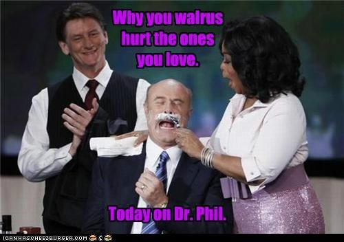 celeb dr phil funny oprah TV - 6443139840