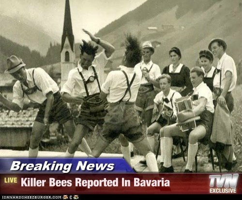 Breaking News - Killer Bees Reported In Bavaria