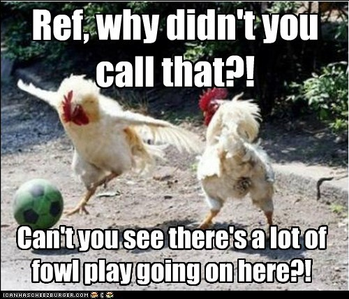call,chickens,football,foul play,fowl,playing,puns,referee,soccer,sports