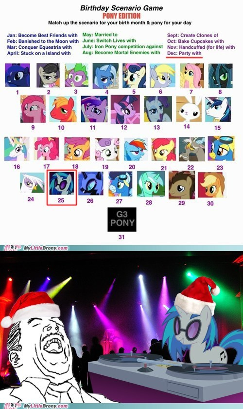 birthday christmas Party the internets vinyl scratch - 6444454656