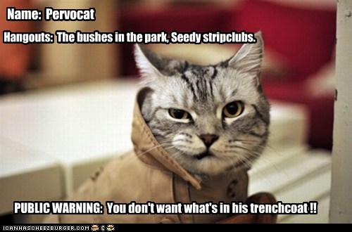 Name: Pervocat Hangouts: The bushes in the park, Seedy stripclubs. PUBLIC WARNING: You don't want what's in his trenchcoat !!
