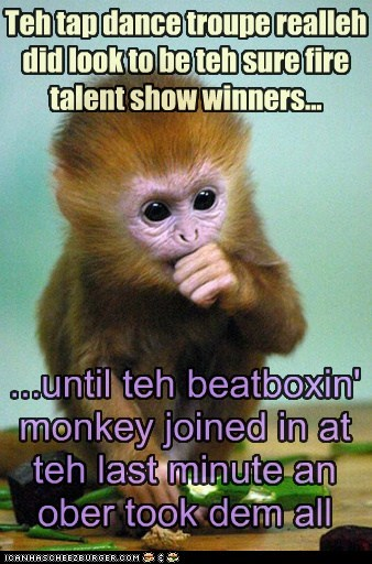 Teh tap dance troupe realleh did look to be teh sure fire talent show winners... ...until teh beatboxin' monkey joined in at teh last minute an ober took dem all