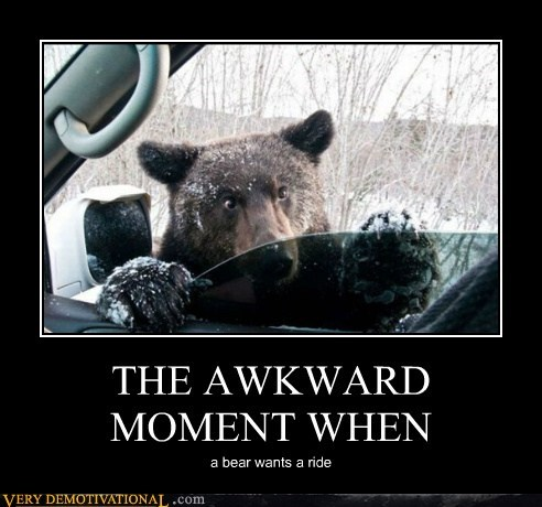 THE AWKWARD MOMENT WHEN a bear wants a ride