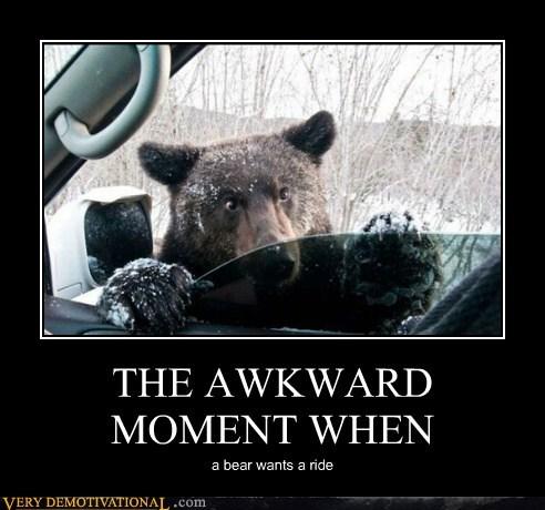 Awkward bear hilarious ride - 6446604032