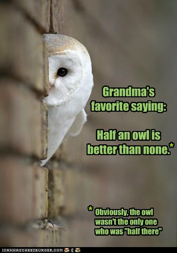 "Grandma's favorite saying: Half an owl is better than none. * * Obviously, the owl wasn't the only one who was ""half there"""