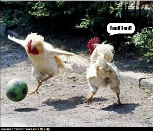 chickens,football,foul,game,joke,old,playing,pun,soccer,tired