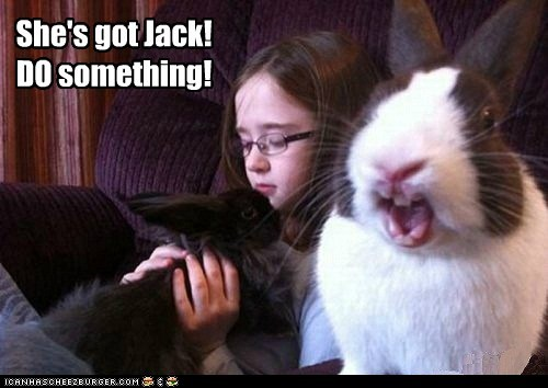 bunnies camera help kids scared - 6446686208