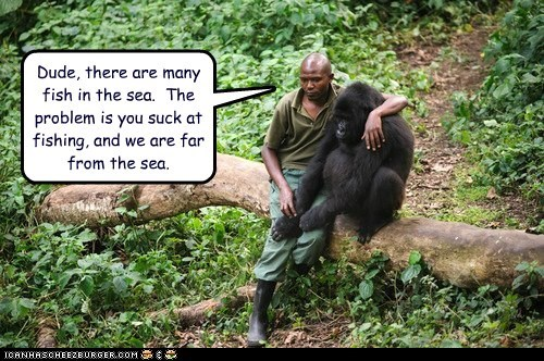 captions comfort gorilla hug plenty of fish in the sea problem - 6450721280