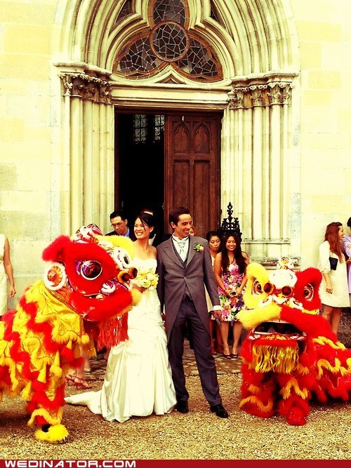 chinese dragons,dragons,funny wedding photos