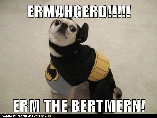 batman costume cute derp dogs goggie - 6451442176