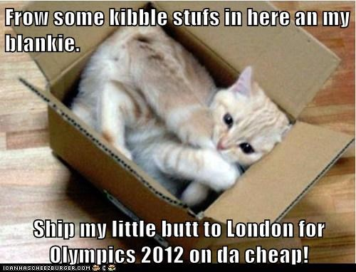 Frow some kibble stufs in here an my blankie.  Ship my little butt to London for Olympics 2012 on da cheap!
