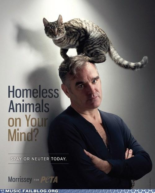 cat morrissey - 6452296192