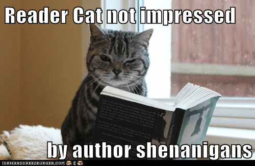 author,best of the week,book,captions,Cats,literature,plot,read,reader,writing