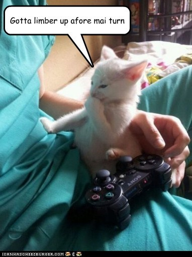 captions,Cats,exercise,limber,playstation,stretch,turn,video games