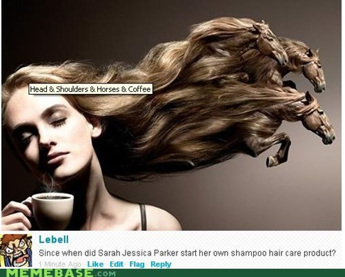 head and shoulders,horses,Memes,sarah jessica parker,shampoo