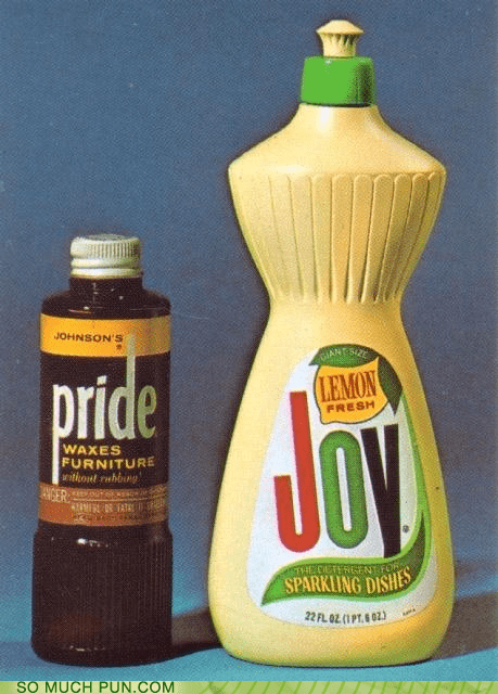 double meaning expression Joy literalism pride pride and joy