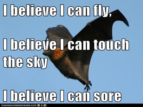 I believe I can fly, I believe I can touch the sky I believe I can sore