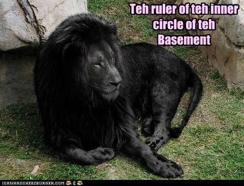 basement basement cat black fur lion ruler - 6454268160